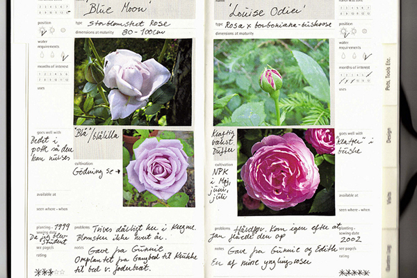 Garden Journals w/ Catherine Crowder