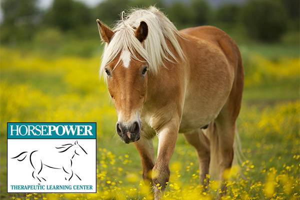 Horsepower – An Afternoon with Horses [FULL]